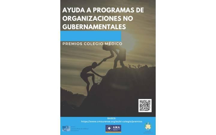 Premio Ayuda a Programas de Organizaciones No Gubernamentales